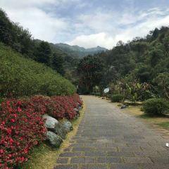 Yannan Feiqiao Stream Scenic Area User Photo