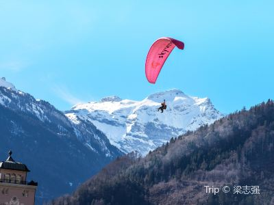 Interlaken Skydiving