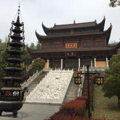 金地藏寺用戶圖片