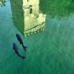 알카사르 여행 사진
