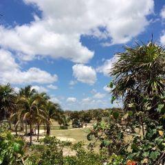 Tulum User Photo