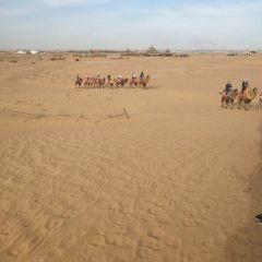 騰格里沙漠營地用戶圖片