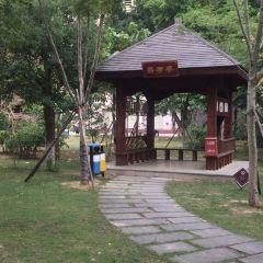 Yuanyangchi Park User Photo