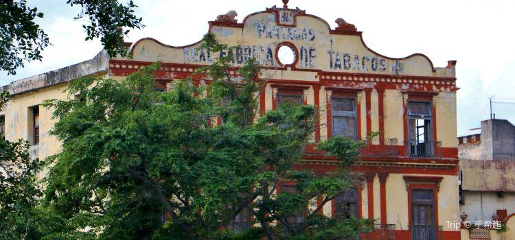 Real Fabrica de Tabacos Partagas1