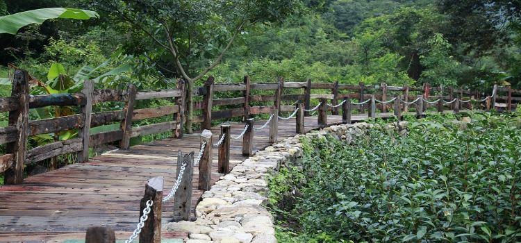 橋渓古韵景観地3