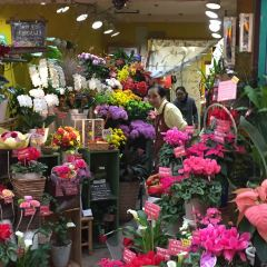 덴진바시스지 상점가 여행 사진