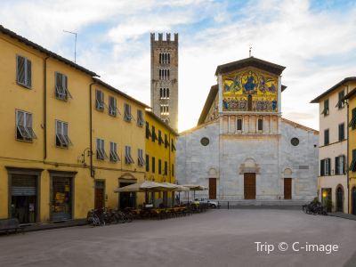 Basilica of San Frediano
