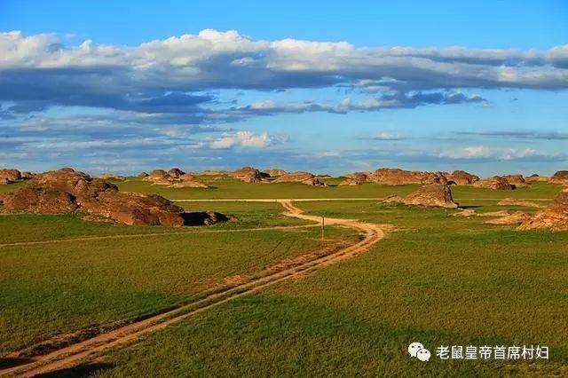 清華才子金融街財富新貴,卻一心想回烏蘇旗,這片草原有何魔力?