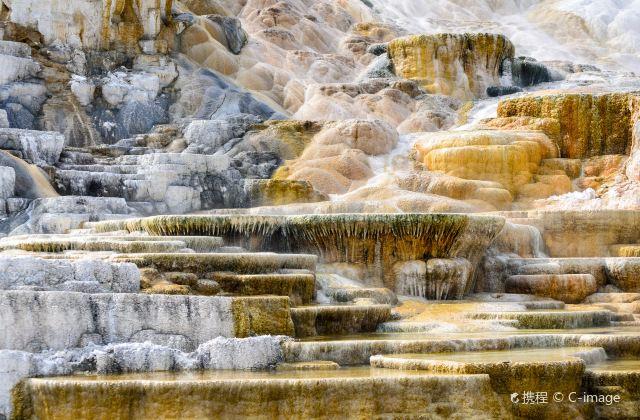 黃石國家公園:領略大自然的鬼斧神工