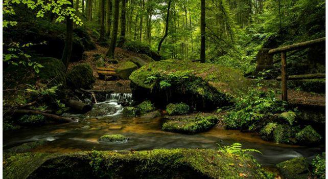 千松壩森林公園1