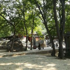 옥천원 여행 사진