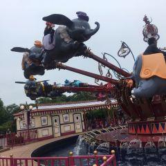 Dumbo the Flying Elephant User Photo