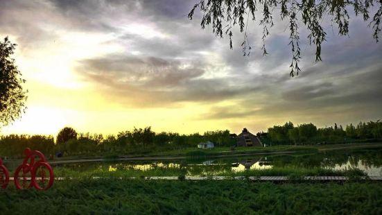 聖火文化公園
