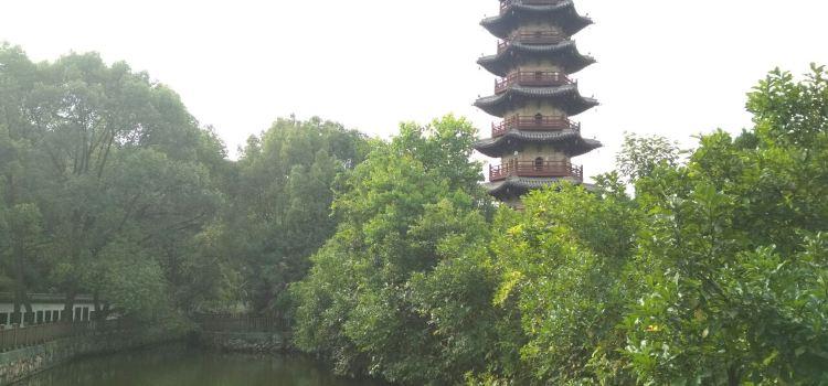 延慶寺塔3