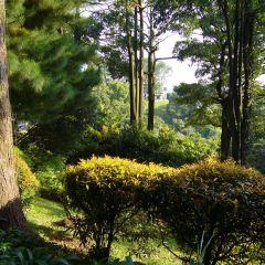 Mount Faber Park User Photo