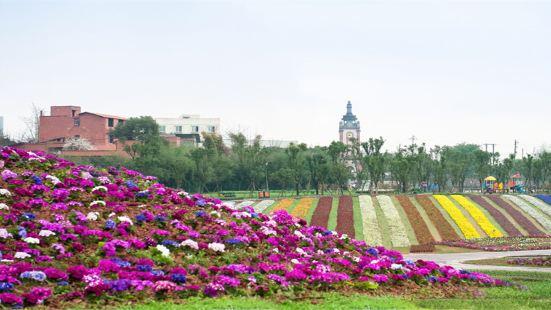 Xinglong Sea of Flowers