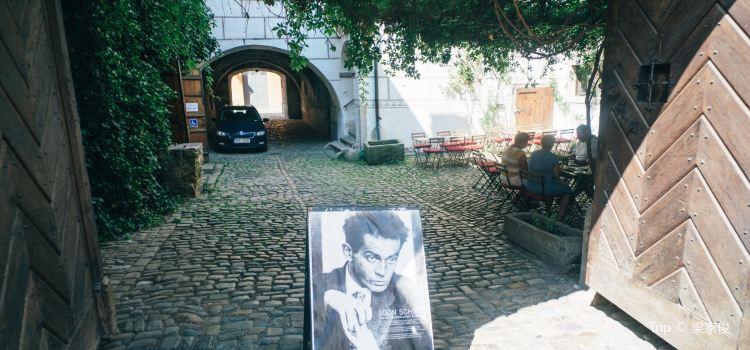 Egon Schiele Art Centre2