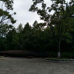 西南林業大學用戶圖片