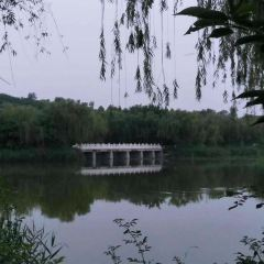Honglian Lake User Photo