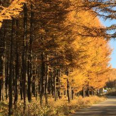 Cuiyunshan Scenic Area User Photo