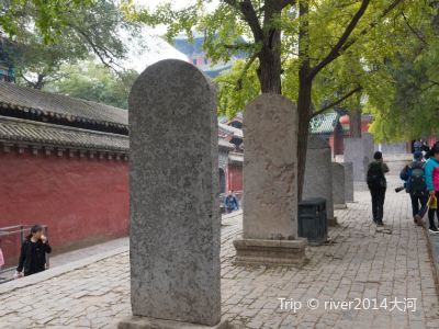 Shaolin Temple Stele Forest