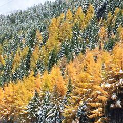 奶子溝彩林穀用戶圖片