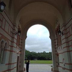 Rice University User Photo