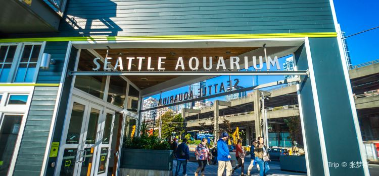 Seattle Aquarium3
