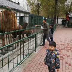 Pu Zoo User Photo
