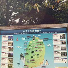 男木島之魂用戶圖片