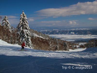 富良野滑雪場