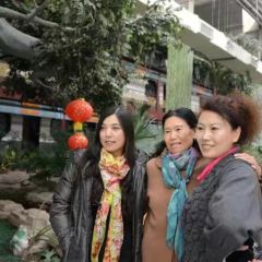 Xiajin Yellow River Forest Park User Photo