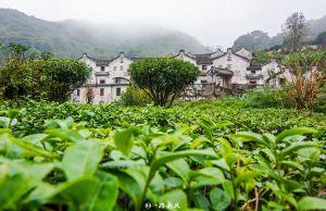 Meizhou,newyearstravel