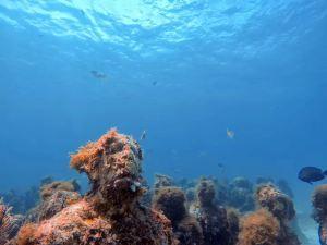 Cancun,unforgettableexperiences