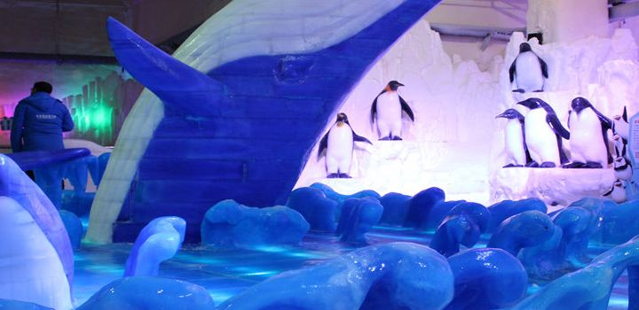 Changzhou Antarctic Ice and Snow Park1