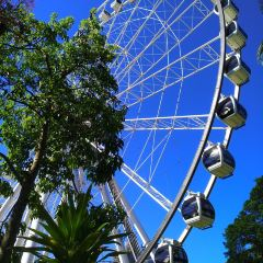 Wheel of Brisbane User Photo