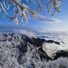 巴山大峽谷用戶圖片