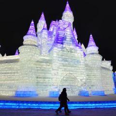 哈爾濱冰雪大世界室內冰雪主題樂園用戶圖片