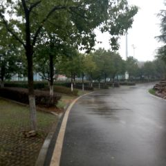 Pinghu Park User Photo