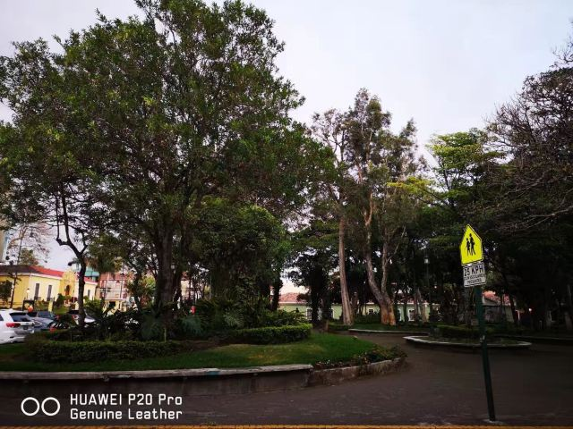 Universidad de Costa Rica