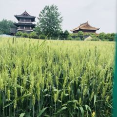 Yunhai Wetland Golf Club User Photo