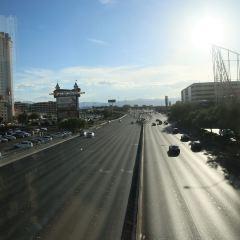 라스베가스 다운타운 여행 사진
