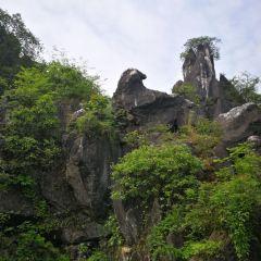 玉石林風景區用戶圖片