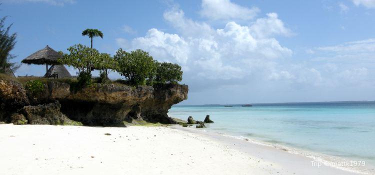 Coral Cliffs2
