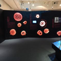 台灣博物館用戶圖片