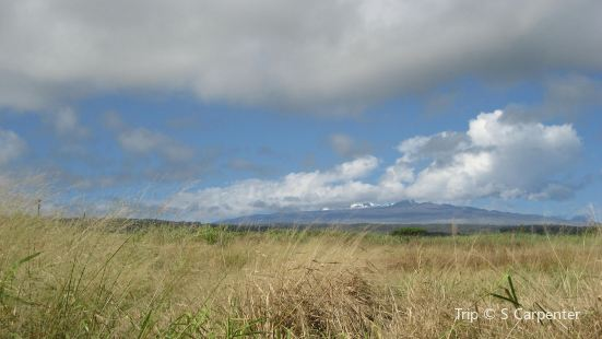 Mauna Kea State Recreation Area
