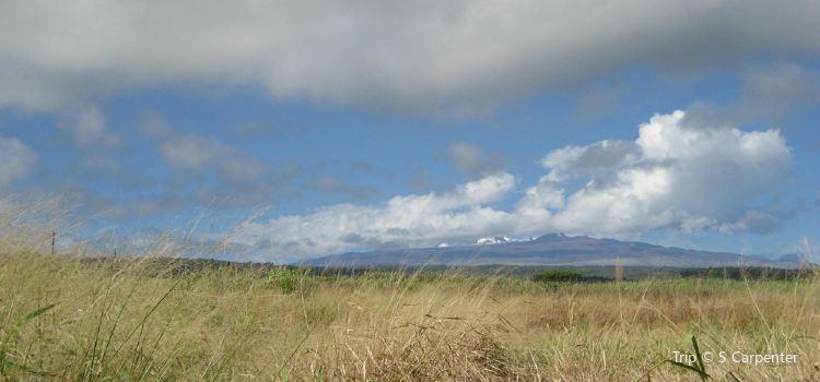 Mauna Kea State Recreation Area2