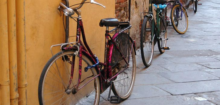 Florence by Bike2