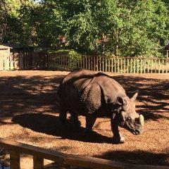 마드리드 동물원 수족관 여행 사진