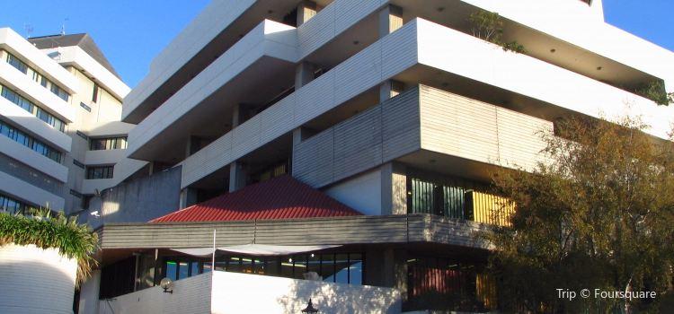 Dunedin Library1